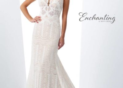 Enchanting-Lace-Short-Sleeved-Dress